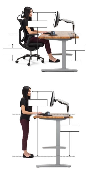 Surprising Ergonomic Calculator Uplift Desk Evergreenethics Interior Chair Design Evergreenethicsorg
