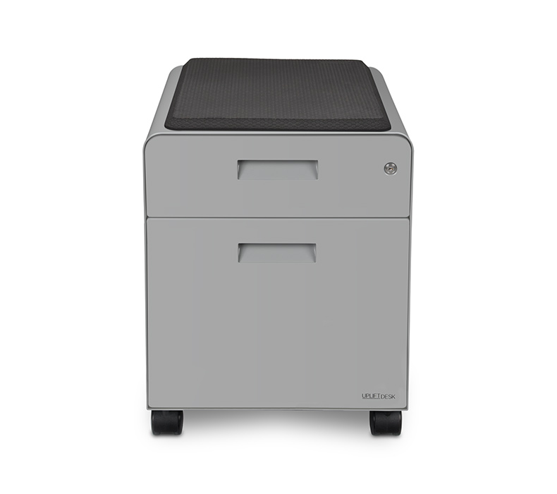 A Gray Rolling 2 Drawer File Cabinet